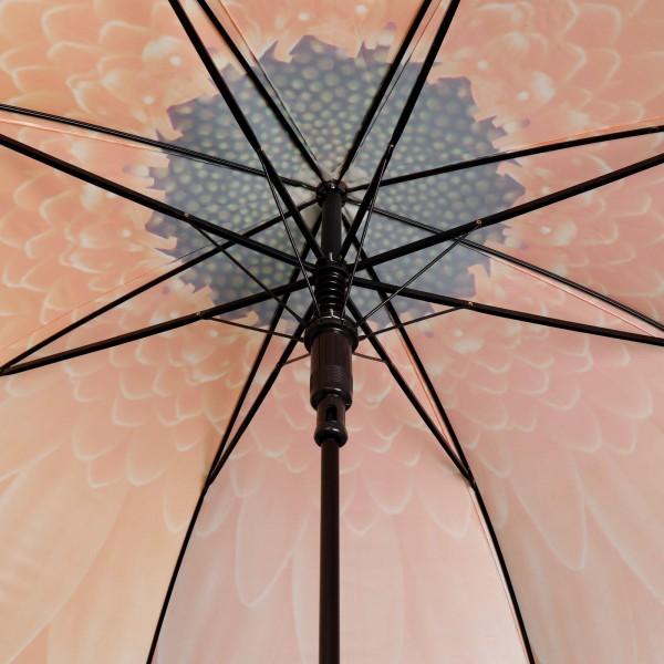 Дамски чадър Гербери